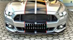 Roman H. verified customer review of RTR Lower Grille (2015-17)