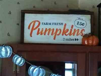 Dianna Perry verified customer review of Pumpkin Patch Sign Stencils (3 Pack)