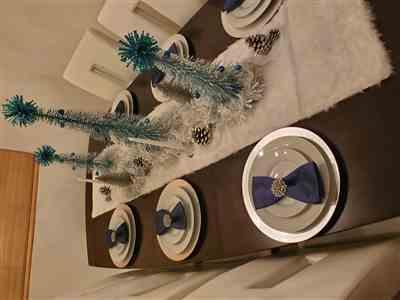 Sheanel Montenegro verified customer review of DIAMANTE SNOWFLAKE NAPKIN RING