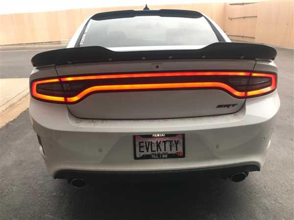 DORKYPOP License Plate Frames Review