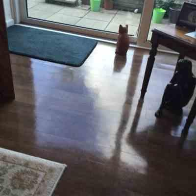 Wheatley verified customer review of Stikatak Vinyl Flooring Cleaner - Pro Range Buff & Shine - 500ml