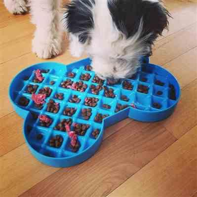 Woof N' Wag SloDog No Gulp Bone-Shaped Slow Feeding Plate Cyan Review