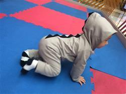 Jane Shepherd verified customer review of Dinosaur Baby Jumpsuit