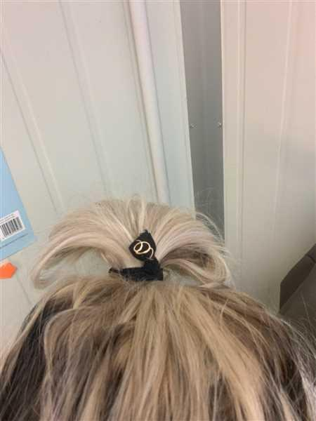 xoBeauty Hair Ties ANIMAL Review