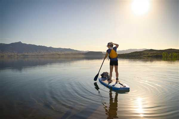 Badfish SUP Monarch Review