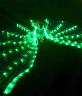 iilandia e. verified customer review of LED Light Up Isis Wings