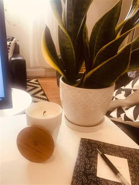 Mimi & August Cielo Candle Review