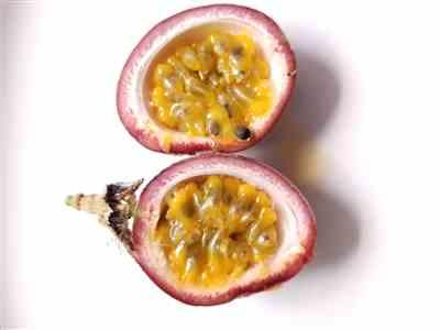 Brie  verified customer review of Passion Fruit Vine (Flower)