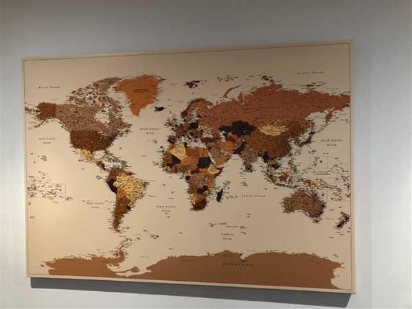 Trip Map World Push Pin Map - Brown (Detailed) Review