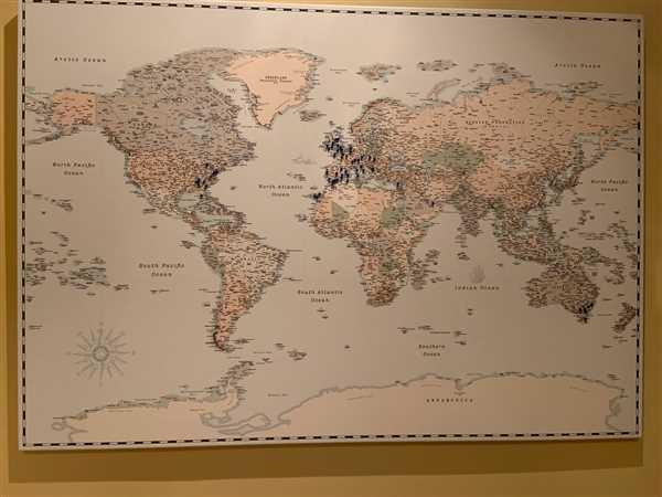Michelle Joyce verified customer review of World Push Pin Map - Retro light blue (Detailed)
