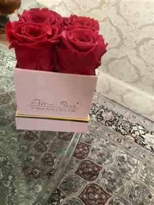 FATMA HANEY verified customer review of Lennox Eternal Rose Gift Box