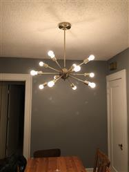 Carla C. verified customer review of Meridia Sputnik Style 12-Light Chandelier