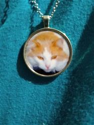 James T. verified customer review of Customizable Pendant Necklace with Your Cat
