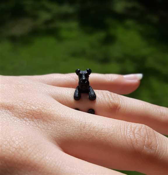 Gabriela Collazo verified customer review of Schnauzer Wrap Ring