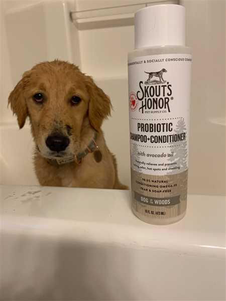Skout's Honor Probiotic Shampoo + Conditioner For Dogs & Cats Review
