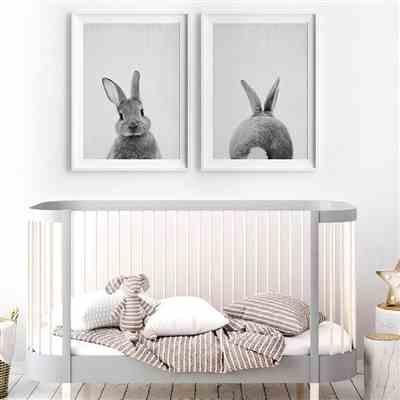 Shean C. verified customer review of 2 Panel Bunny Rabbit Canvas Wall Art