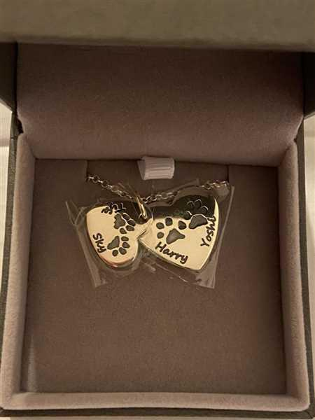 Karen Davidson verified customer review of Pawprint Descending Heart Necklace, Four Prints And Four Names