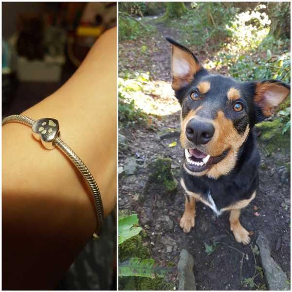 Caley Page verified customer review of Engraved Pawprint Heart Charm Bead, Two Prints And Initials