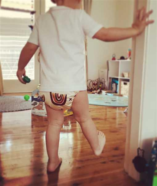 Syl M. verified customer review of Modern Cloth Nappy - Rainbow (Earth Tones)