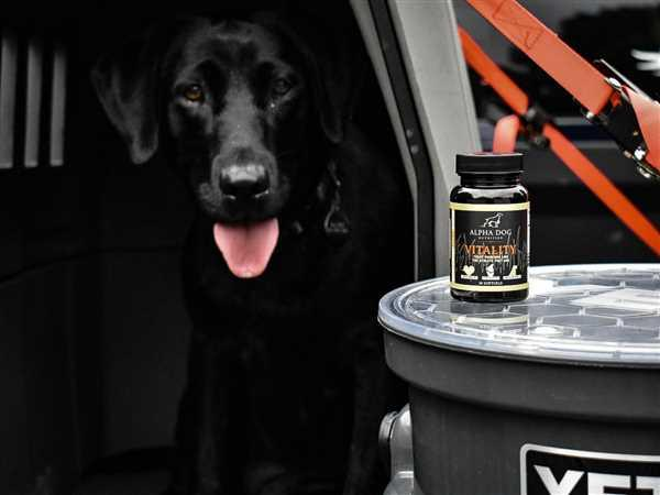 Jim Reszke verified customer review of Vitality Omega 3 for Dogs