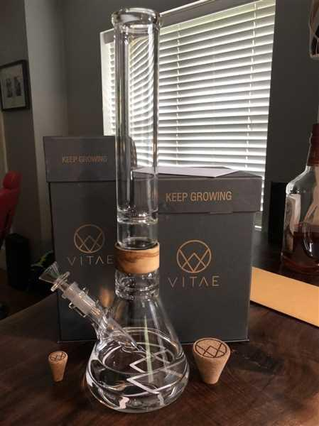 VITAE Glass 16 Alpha (Pre-Order) Review