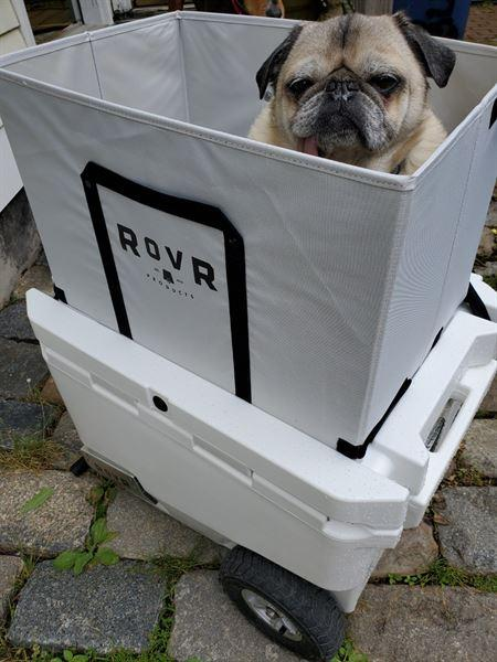 RovR Products Wagon Bin Review