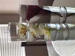 Anonymous verified customer review of Wine Calla Lily Faux Flower Bundle - 11 Tall