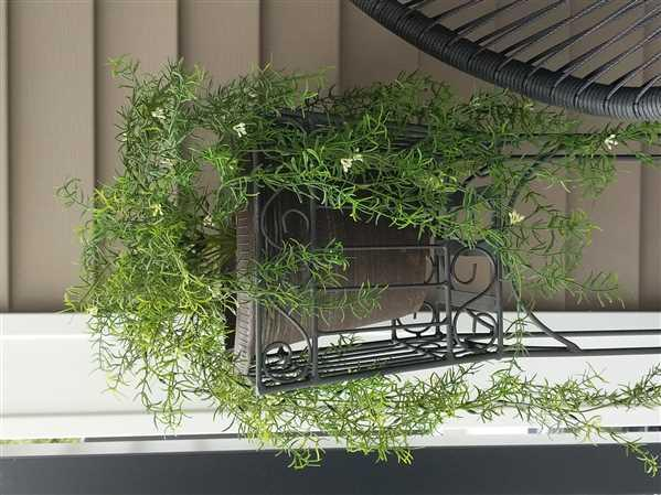 Afloral.com Plastic Asparagus Fern Indoor/Outdoor Hanging Bush - 30 Long Review