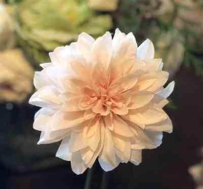 Anonymous verified customer review of Blush Peach Dahlia Silk Flower - 19