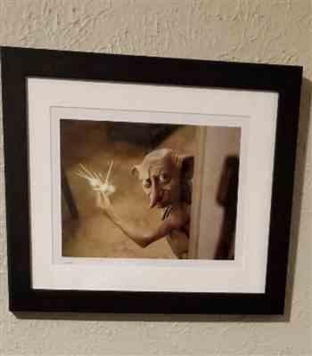 Anonymous verified customer review of Dobby Framed Print from Harry Potter and the Chamber of Secrets