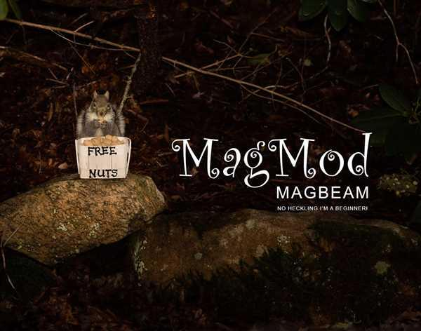 MagnetMod MagBeam Kit Review