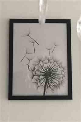 Jacinto Waelchi verified customer review of Black & White Dandelion Plant Wall Canvas Art