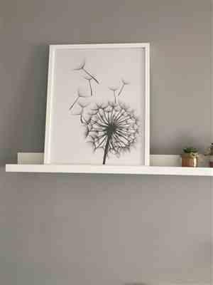 Dominic Kertzmann verified customer review of Black & White Dandelion Plant Wall Canvas Art